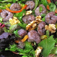 Blueberry Shrimp Walnut Salad with Lemon Vinaigrette