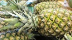 image-pineapple