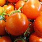 image-tomato