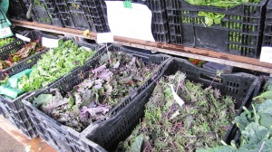 A variety of kale, chard, and greens