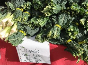 The vendor shared with me how to best cook kale.